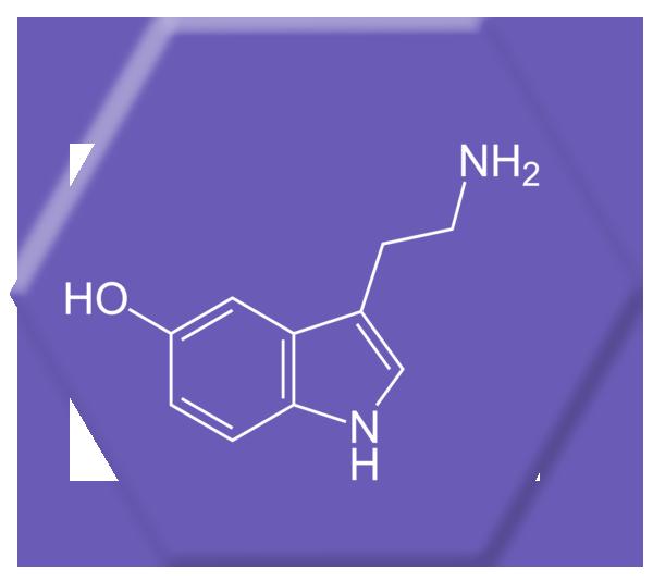 Vistiendo serotonina exexcuses®